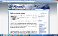 LifeStream Blog